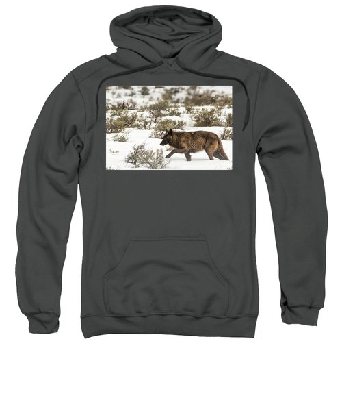 W3 Sweatshirt