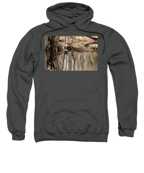 Wood Duck Sweatshirt