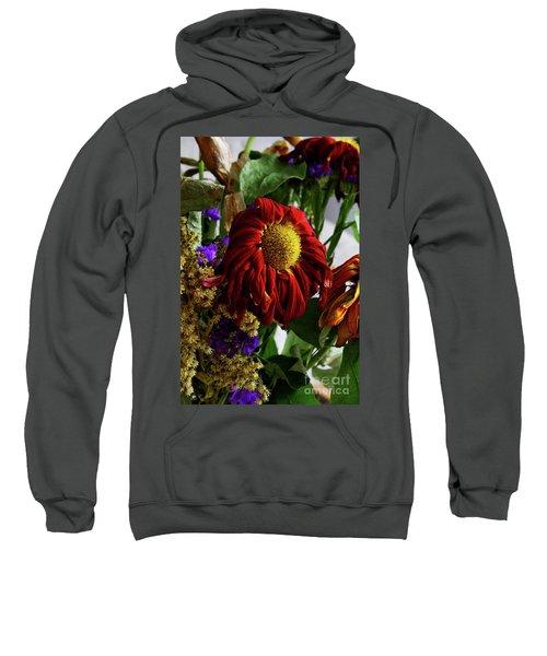 12-7-2008img1852a Sweatshirt
