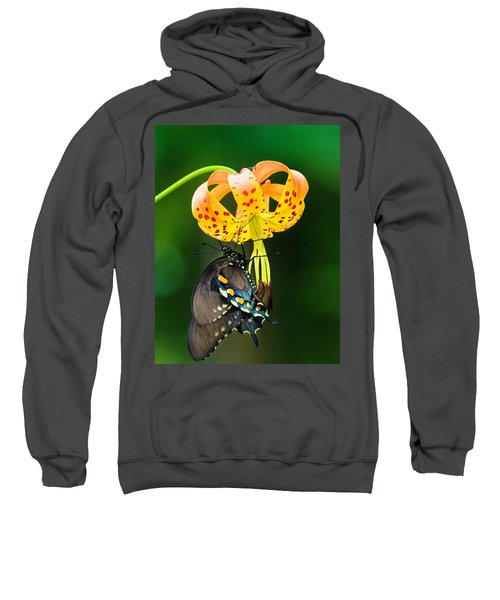 Swallowtail On Turks Cap Sweatshirt