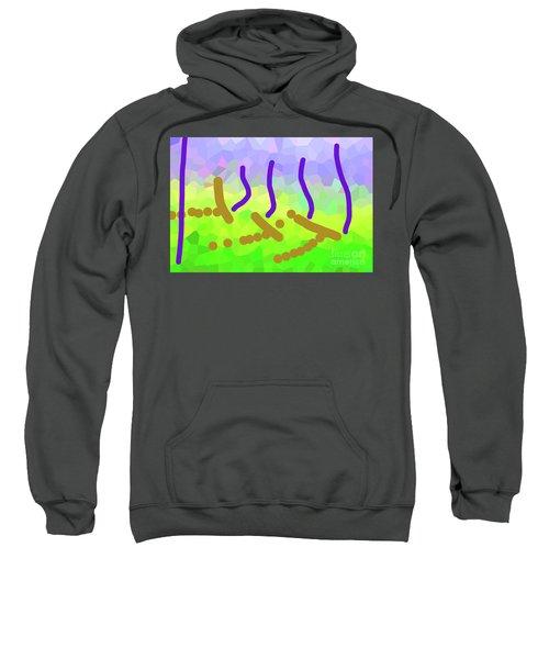 3-15-2009xabcdefghijklmn Sweatshirt