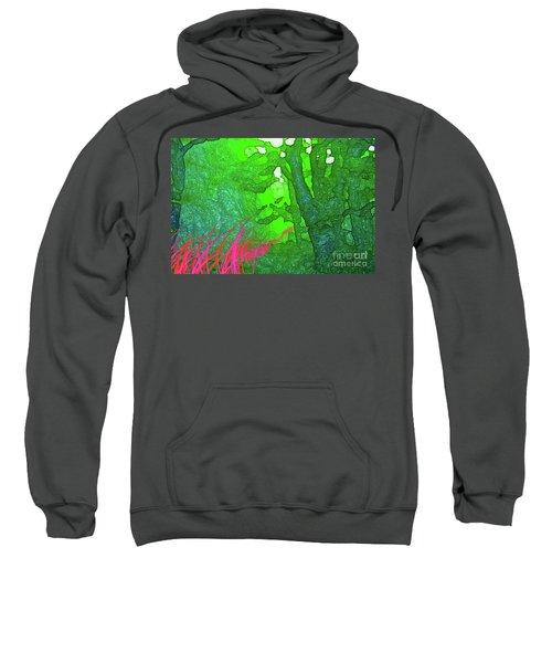 3-20-2009ab Sweatshirt