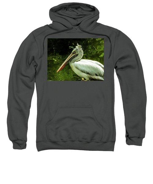 Animal Sweatshirt