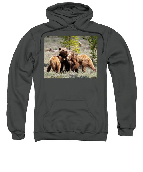 399 And Cubs Sweatshirt