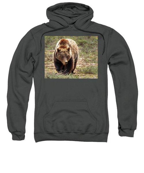 399 Sweatshirt