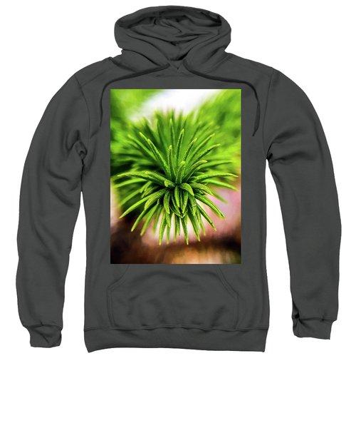 Green Spines Sweatshirt