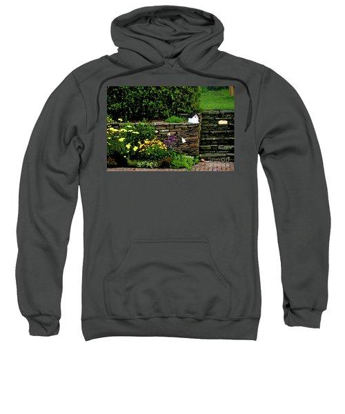 7-14-2006img9048ab Sweatshirt