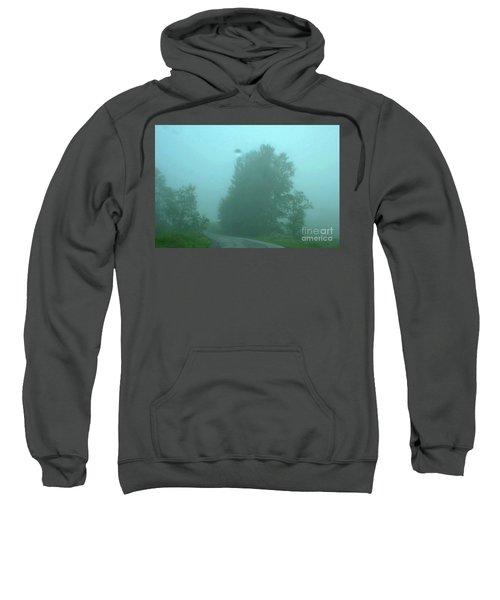 7-14-2006img9057a Sweatshirt