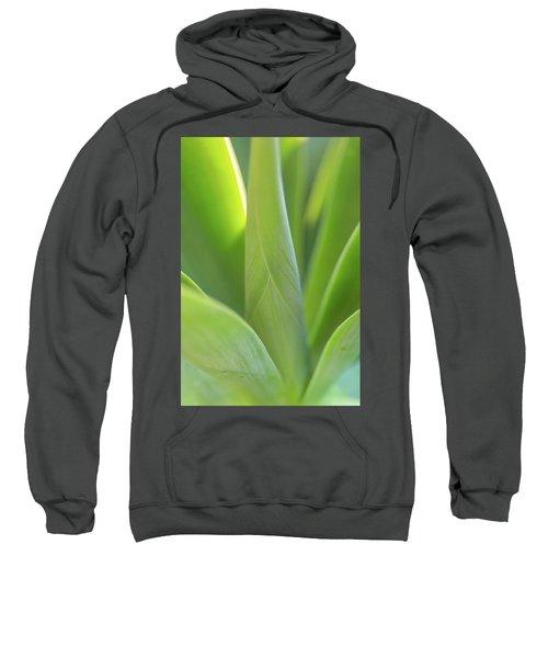 A Bouquet Of Leaves Sweatshirt