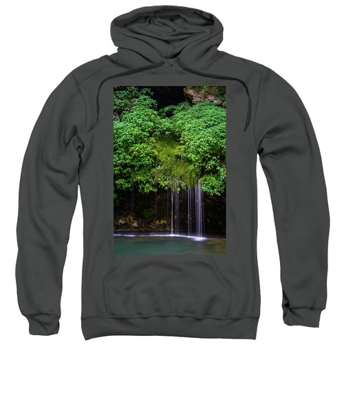 A Hidden Gem Sweatshirt