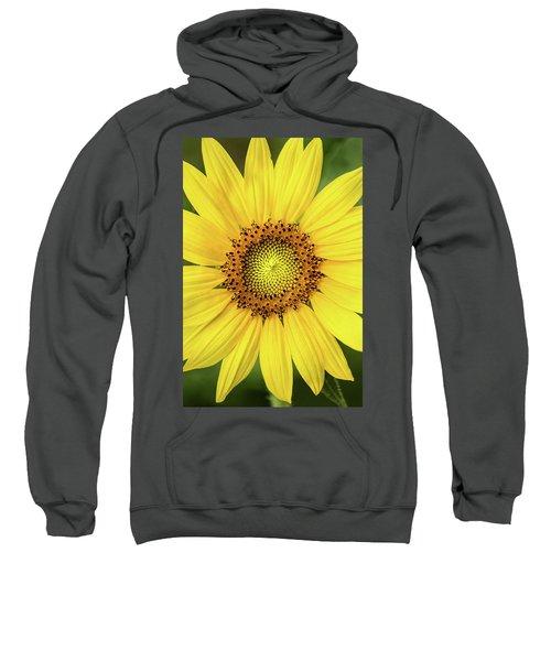 A Perfect Sunflower Sweatshirt