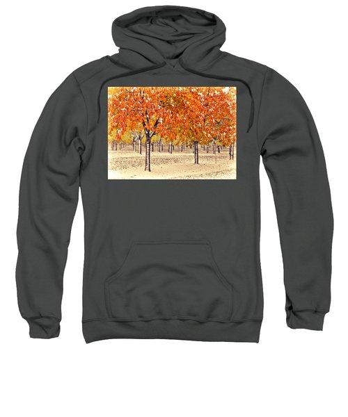 A Touch Of Winter Sweatshirt