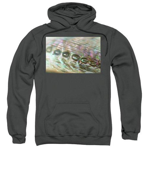 Abalone_shell_9892 Sweatshirt
