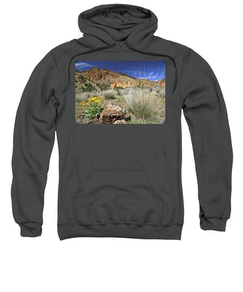 Above Juniper Gulch Sweatshirt