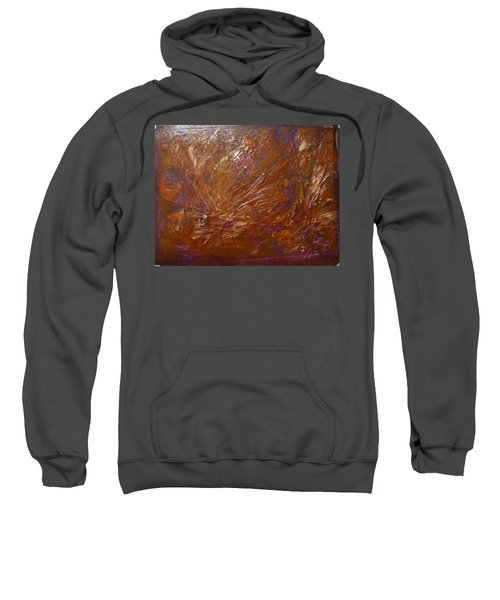 Abstract Brown Feathers Sweatshirt