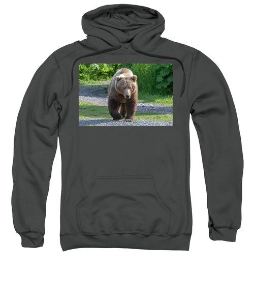 Alaskan Brown Bear Walking Towards You Sweatshirt