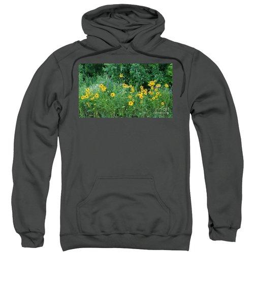 Along The Road Sweatshirt