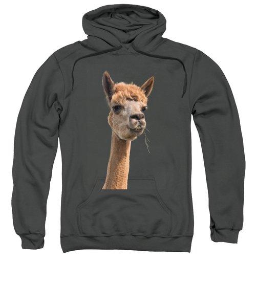 Alpaca Head Sweatshirt