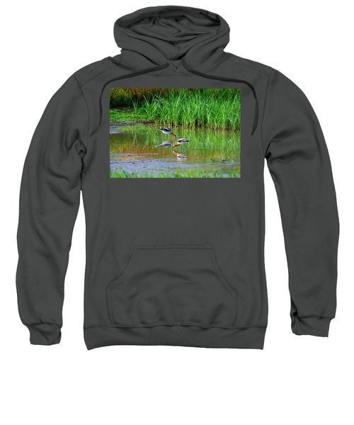 American Avocets Sweatshirt