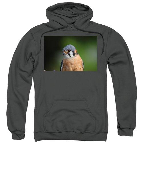 American Kestrel 5151801 Sweatshirt