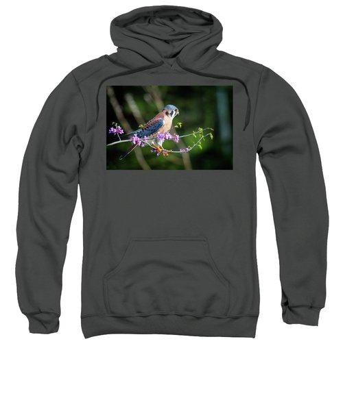 American Kestrel 5151804 Sweatshirt