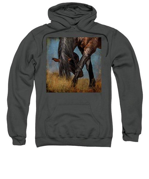 Angles Of The Horse Sweatshirt