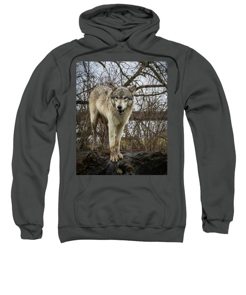 Anit I Pretty Sweatshirt