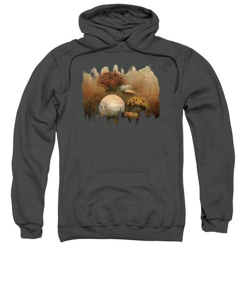 Hello Pumpkin Sweatshirt