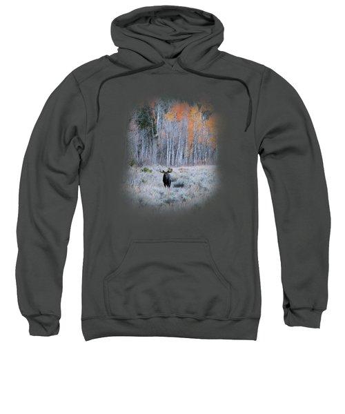 Moose And Aspen Sweatshirt
