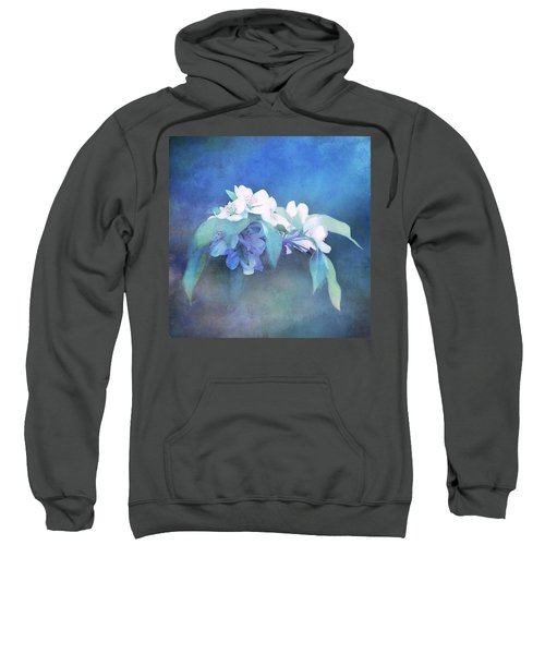 Painted Crabapple Blossoms Sweatshirt
