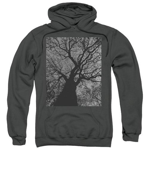 Ash Tree Sweatshirt