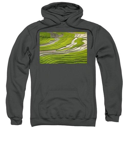 Asian Rice Field Sweatshirt