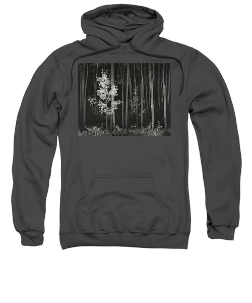 Aspens Northern New Mexico Sweatshirt