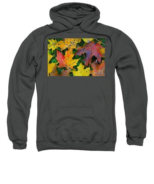 Autumn Leaves Sweatshirt