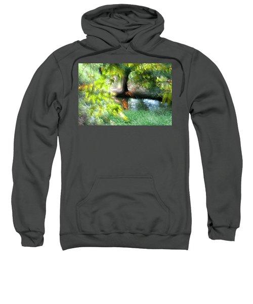 Autumn Leaves In The Morning Light Sweatshirt