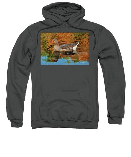 Autumn Swim Sweatshirt