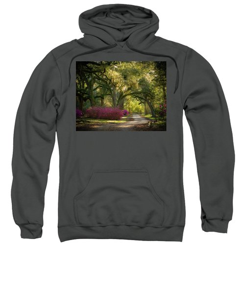 Avery Island Pathway Sweatshirt