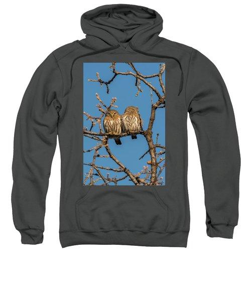 B36 Sweatshirt