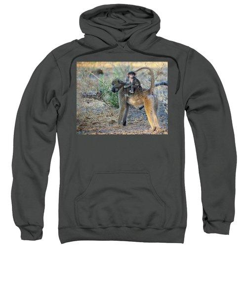 Baboon And Baby Sweatshirt