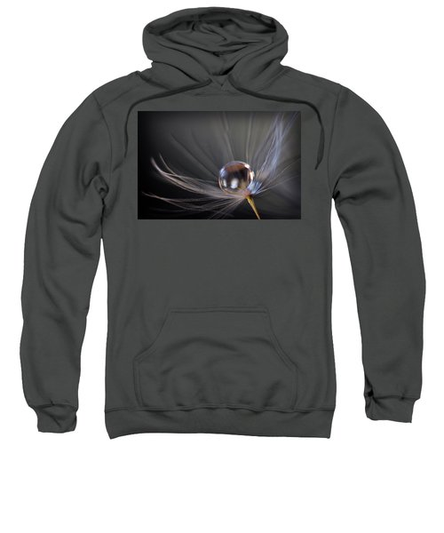 Balanced Sweatshirt