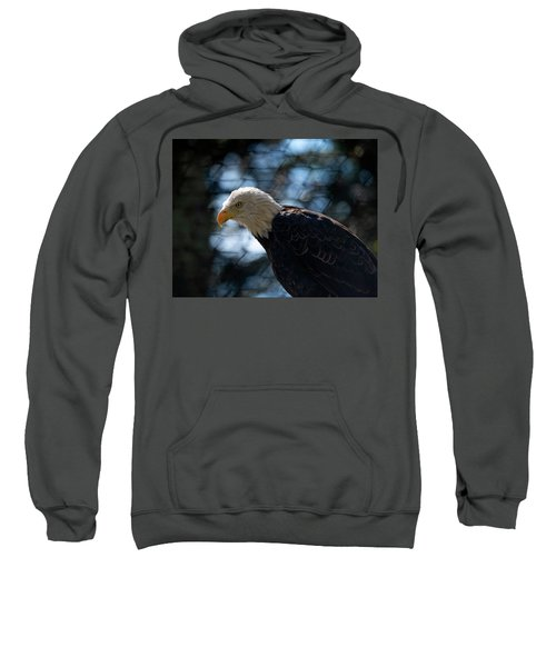 Bald Eagle Grandfather Mountain Sweatshirt
