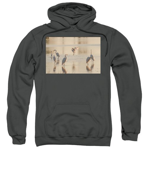 Ballet Of The Egrets Sweatshirt