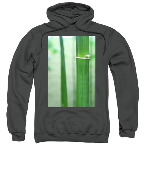 Bamboo 0312 Sweatshirt