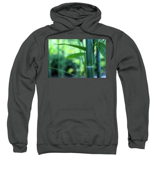 Bamboo 0321 Sweatshirt