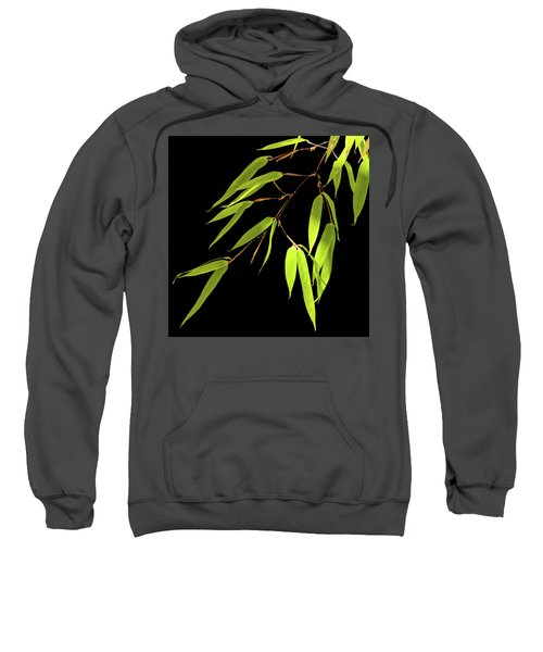 Bamboo Leaves 0580a Sweatshirt