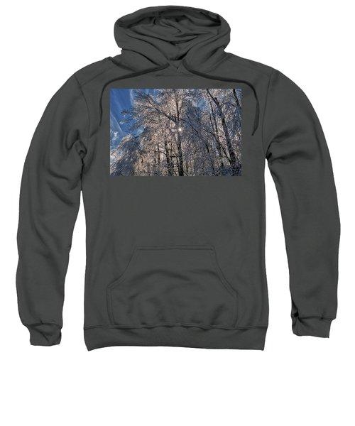 Bass Lake Trees Frozen Sweatshirt
