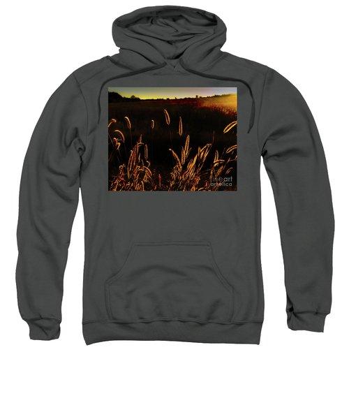Beauty In Weeds Sweatshirt