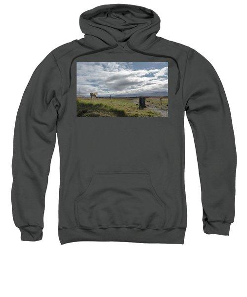 Behold A Pale  Horse Sweatshirt