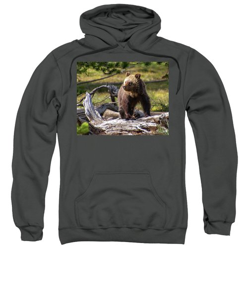 Better View From Here Sweatshirt
