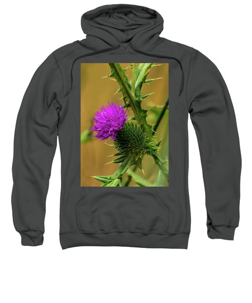 Between The Flower And The Thorn Sweatshirt